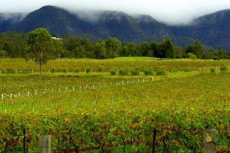 Hunter Valley en Australie