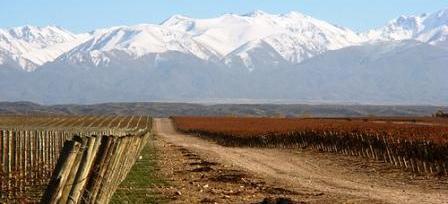 chili-route_des_vins