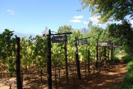 Vignoble Delaire Graff en Afrique du Sud