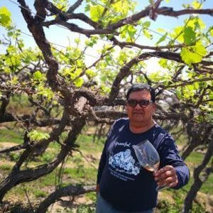 Ica - Pepe Moquillaza - Bodega La Quilloay - Pérou