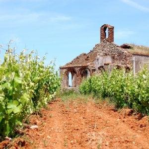 Vinho-verde-Portugal