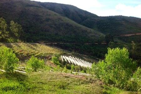 printemps à samaipata en bolivie