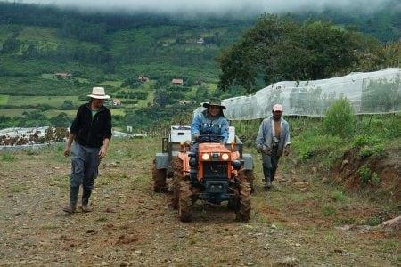 travail-vignes-bolivie