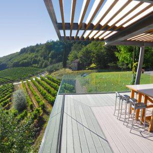 Vallée des vignes Momjan en Istrie Croatie