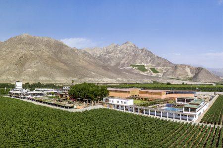 Vinas queirolo au Pérou