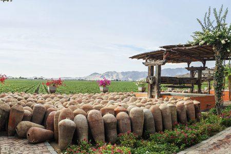 Vinas queirolo Ica Pérou
