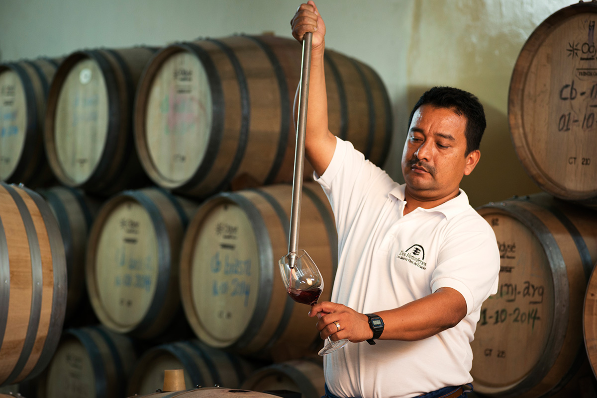 assemblage vin équateur