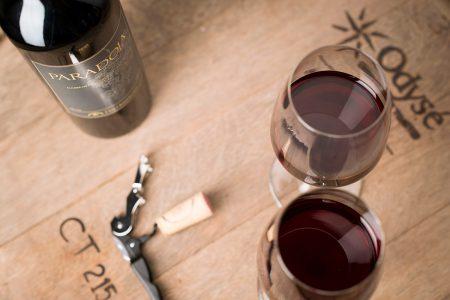 Dégustation vin équateur