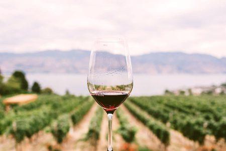 priorat vin de Catalogne