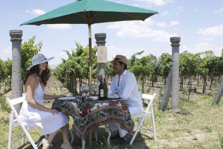 vinicola toyan Mexique