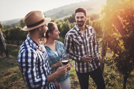 Slovenia People sampling and tasting wines in vineyard