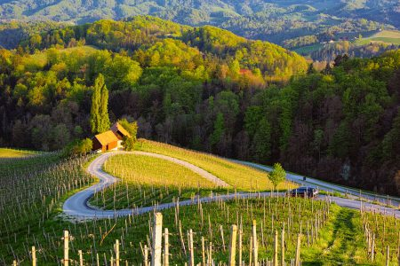 Spicnik, Maribor, Slovenia. Famous Heart shaped wine road.
