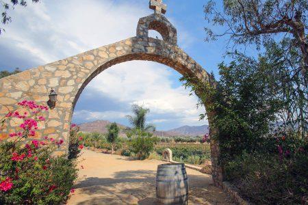 Mexique, Vallée de Guadalupe
