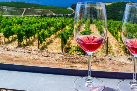 Verre de vin avec vue sur la Côte en Croatie